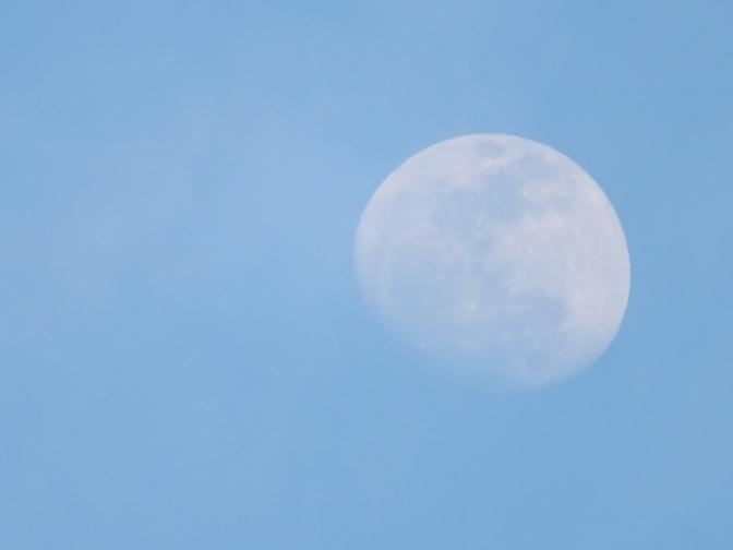 Afternoon Summer moon